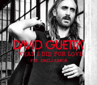 DAVID GUETTA-WHAT I DID FOR LOVE