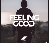 AVICII – FEELING GOOD