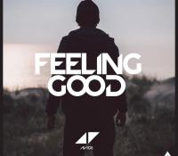 AVICII – FEELING GOOD