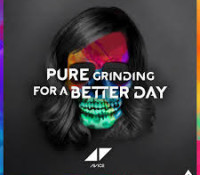 AVICII – FOR A BETTER DAY | PURE GRINDING