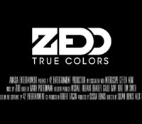 ZEDD – DOCUMENTAL TRUE COLORS