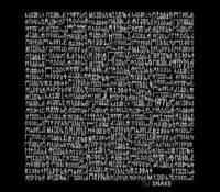 DJ SNAKE FEAT BIPOLAR SUNSHINE – MIDDLE