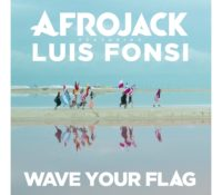 AFROJACK FEAT LUIS FONSI – WAVE YOUR FLAG