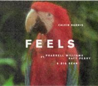 CALVIN HARRIS FEAT PHARRELL WILLIAMS, KATY PERRY & BIG SEAN NO OF COMP – FEELS