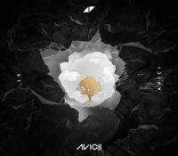 AVICII – WITHOUT YOU (FEAT SANDRO CAVAZZA